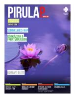 pirulap_2020_03