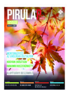 pirulap_2020_4