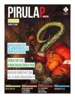 pirulap_2020_5